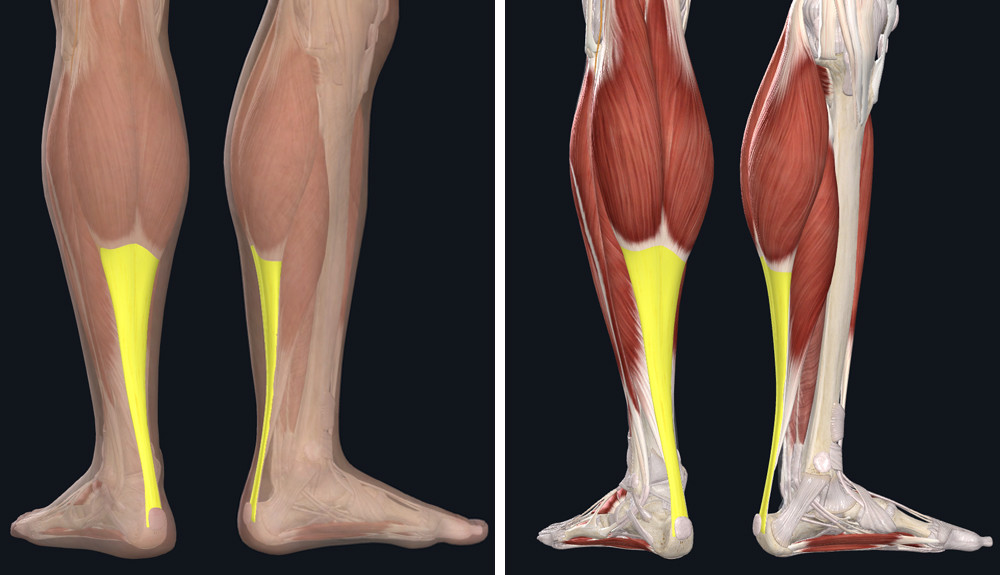 az artritisz fáj a kezemre a láb ízületi gyulladása hogyan kezelhető