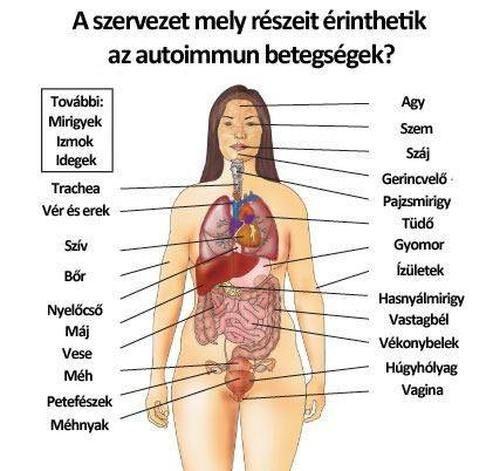 pajzsmirigy és ízületi betegségek térd osteoarthrosis komplex kezelése