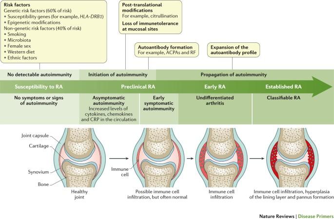 artrózis juharlevél kezelés