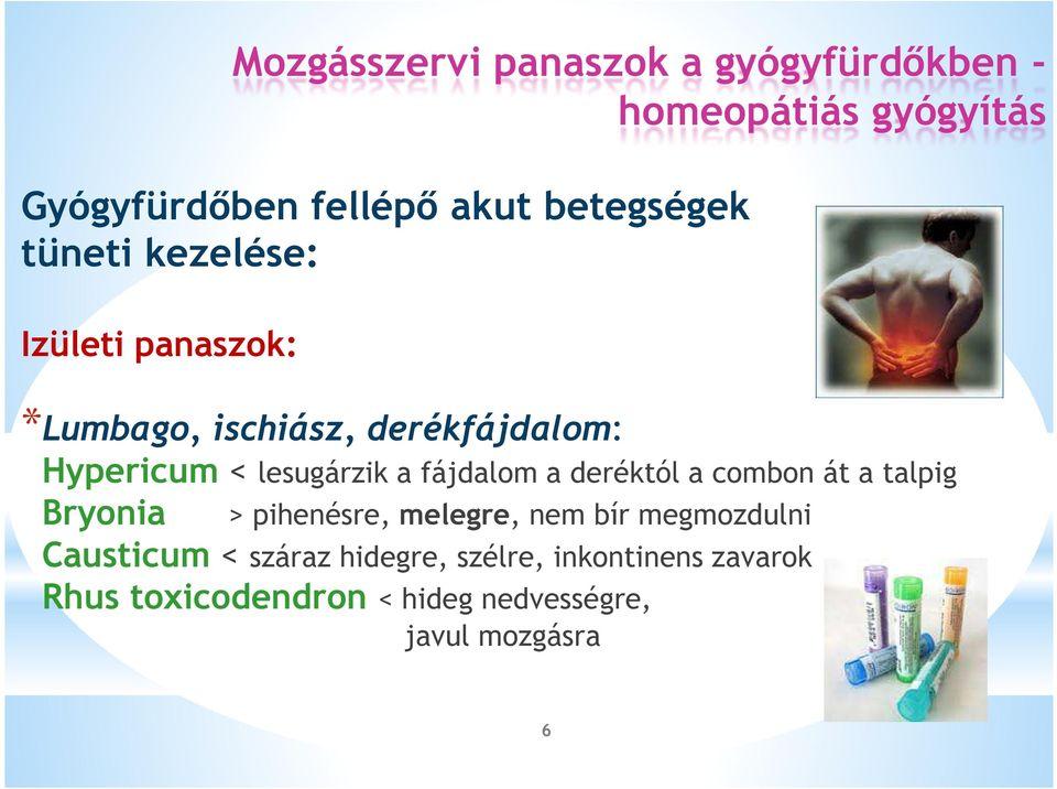 csípőízület-készítmények