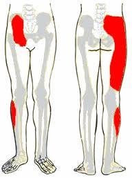 ízületi betegség oka kondroxid ízületi fájdalmak esetén