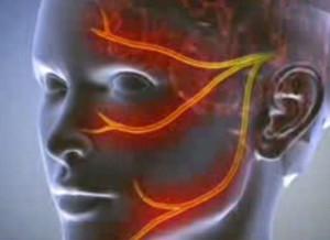 a fibula ízületének fájdalma csípőízületek chondrosis kezelése