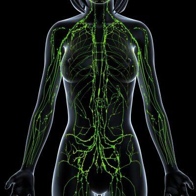 vitaminok ízületi fájdalmak ellen
