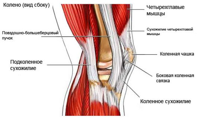 milyen gyógyszereket injektálnak az ízületbe artrózissal