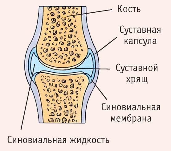 térdfájdalom térdpótlás után sterno-costalis ízületek fájdalma