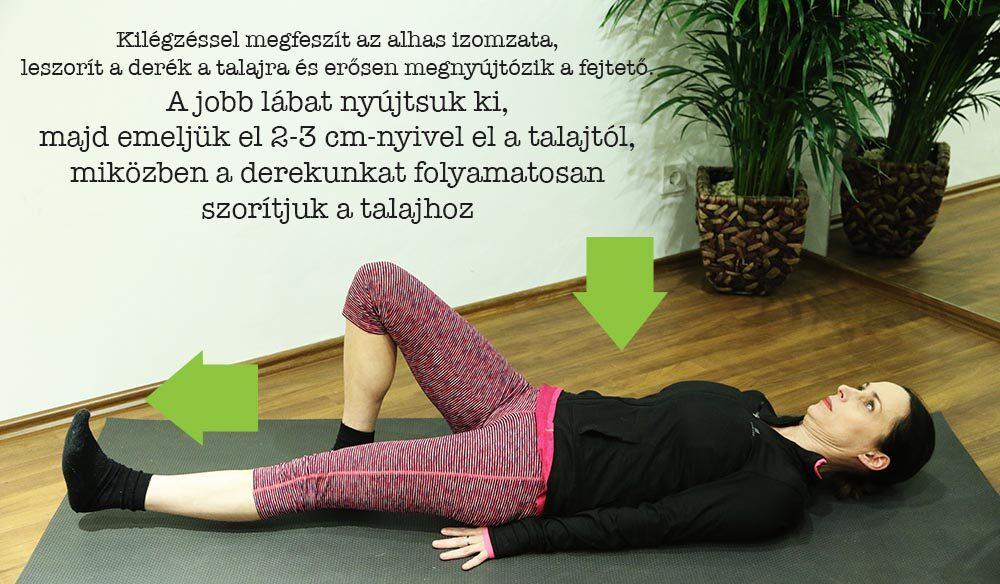 8 gyakorlat derékfájás ellen a mindennapokra   Workout guide, Fitness body, Cardio workout