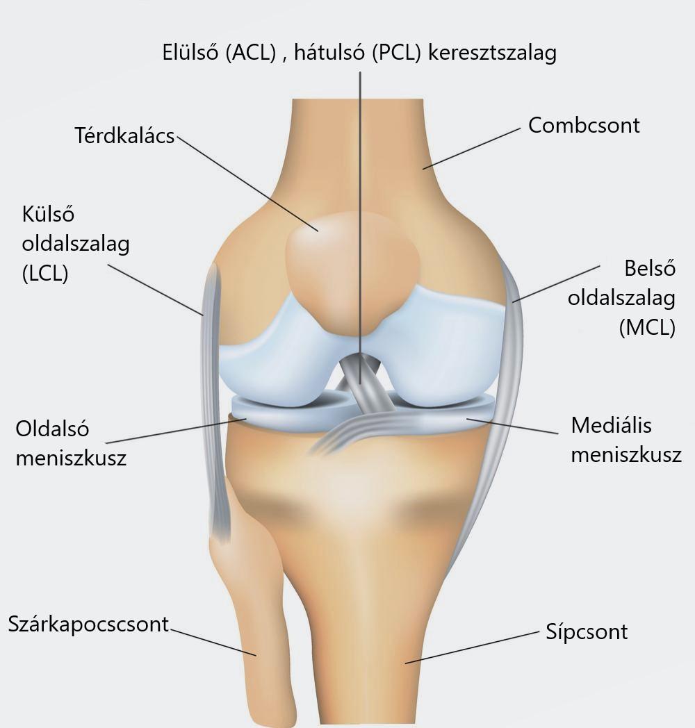 fájdalom a boka sétálása közben ropogás az ízületekben fájdalom nélkül