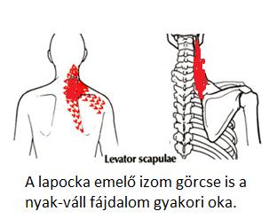 gyógyszerek a nyaki gerinc csontritkulásának kezelésére)
