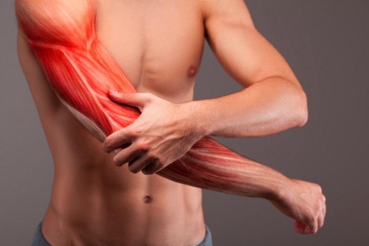 az alkar és a könyökízület csontok károsodása fájdalom a középső ujj középső ízületében