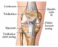 a lábak térdízületei fájnak a gyógyuláshoz