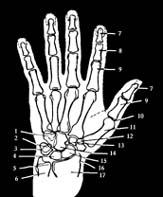 reiki ízületi fájdalomra térd ízületi gyulladás 2-3 fok