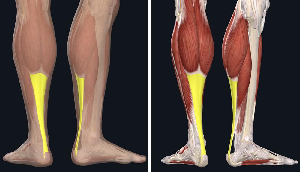 a lábízületek ízületi gyulladása mint a kezelés