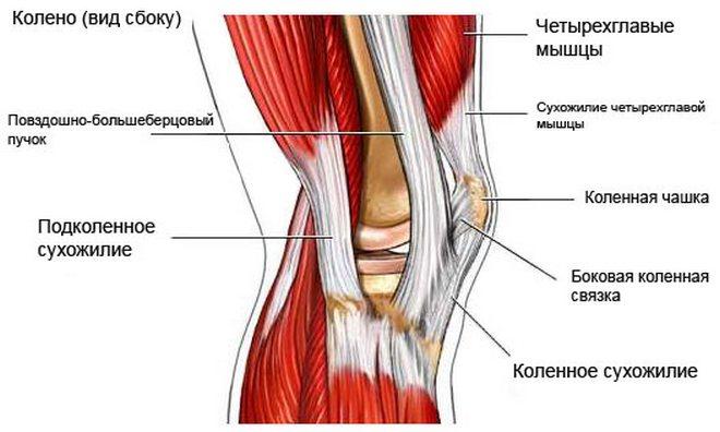 térdízületek betegségei sportolókban ízületi fájdalom kemoterápia