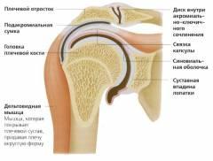 tabletták a vállízület artrózisához himalája ízületi krém