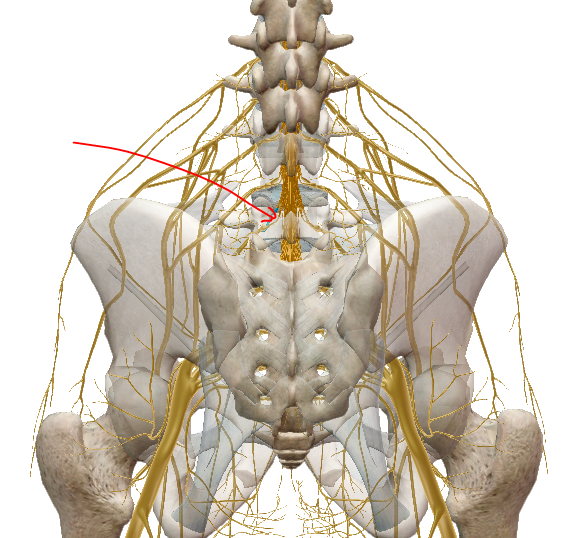 artrózis kezelési ajánlások