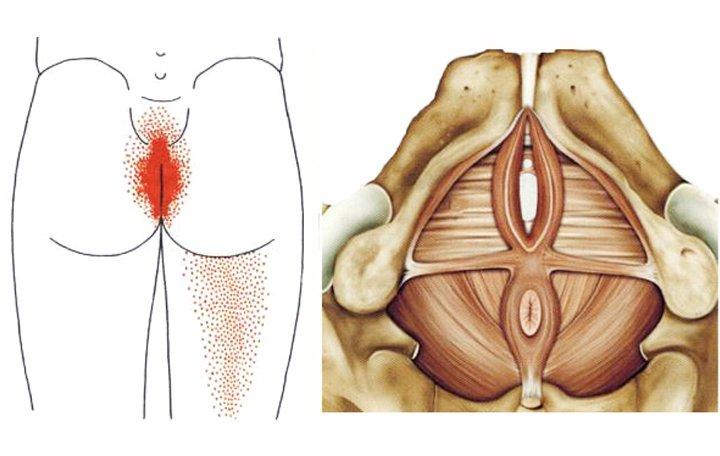 fájó fájdalom a vállízületekben, mit kell tenni recept a tinktúrákról ízületi fájdalmak esetén