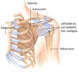 az artrózis nem műtéti kezelése hogyan lehet érzésteleníteni a lábízület fájdalmát