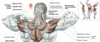 termékek a vállízület artrózisához