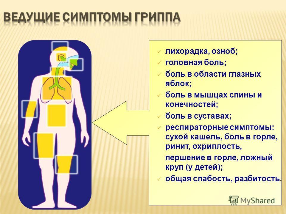Cytomegalia vírus-fertőzés (CMV)