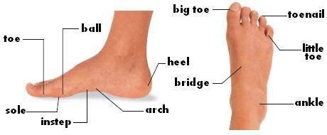 lábujj angolul 3. fokozatú artrózis kezelése